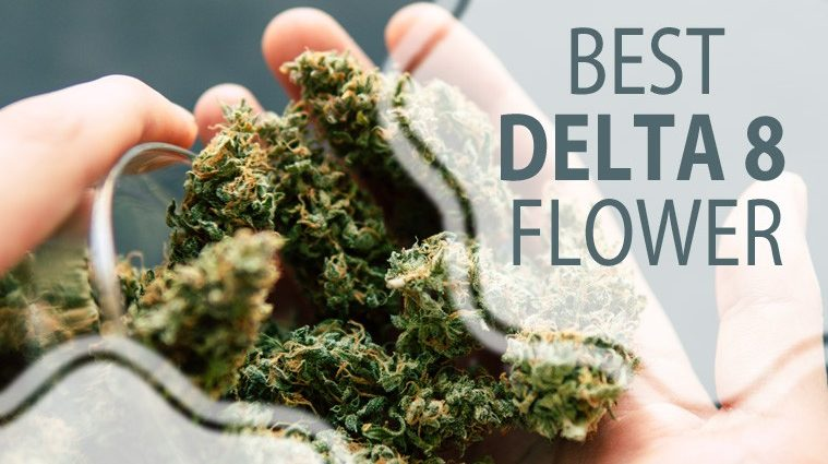 Need To Have Extra Appealing Best THC Detox Methods?